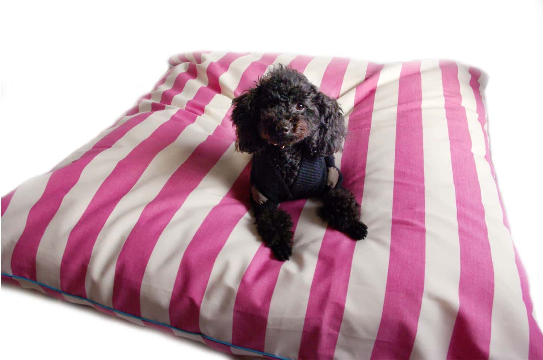 The Dog ワンちゃんと一緒にくつろぐビッグソファークッション ピンクストライプ柄(抗菌・消臭加工済) 120×120cm