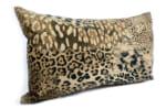 spain-leopard-5030